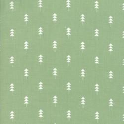 LITTLE TREES - PINE