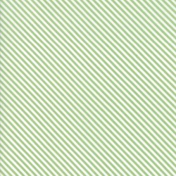 Candy Stripe - SAGE