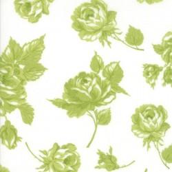 ROSY - CREAM/GREEN
