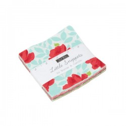 LITTLE SNIPPETS CHARM PK