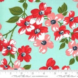 Full Bloom - AQUA