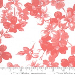 Full Bloom - WHITE - PINK