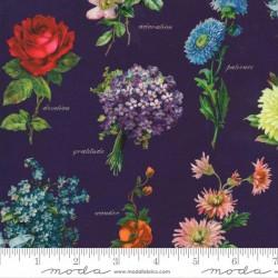 Botanicals - PURPLE