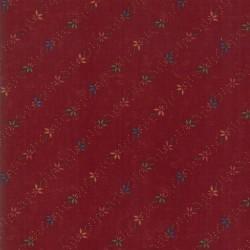 SEEDLINGS - RED