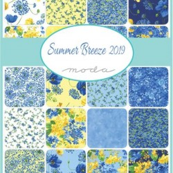 Summer Breeze Charm Pk