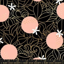 Orange Blossoms - BLACK