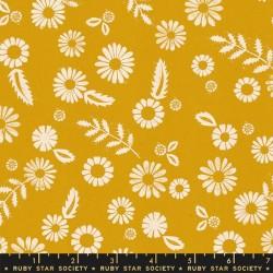 Daisy - GOLDENROD