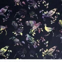 NZ Birds Bali - MIDNIGHT