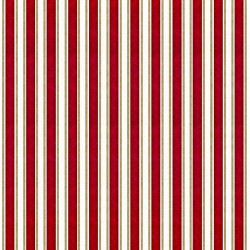Ruled Stripe - GARNET