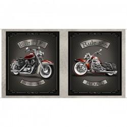 Panel - Motorcycle 60cm - GREY