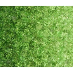 Floralessence Ombre  - GREEN