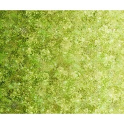 Floralessence Ombre  - GREEN/YELLOW