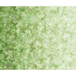 Floralessence Ombre  - LIME