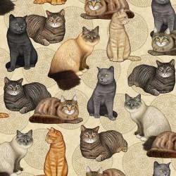 Cat and Medallion - CREAM