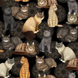 Cat and Medallion - BLACK