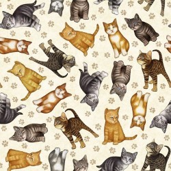 Kitten Toss - CREAM