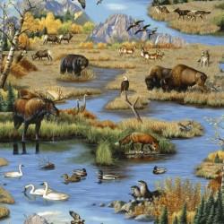 Wildlife Scenic - MULTI