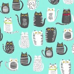 CATS - AQUA