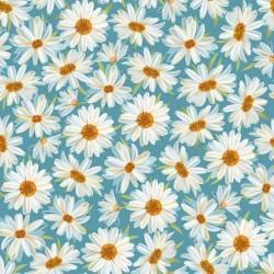 Daisies - AQUA
