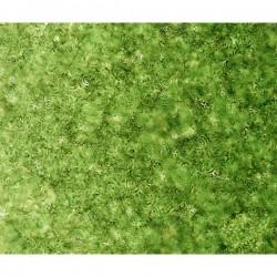 Effervescence - GREEN