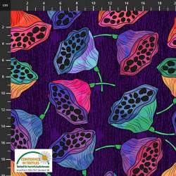 Seed Pods - PURPLE