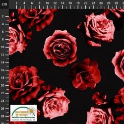 Avalana Sweat 150cm NonBrushed Large Rose - BLACK