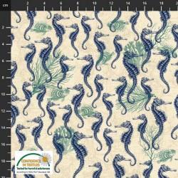 Seahorses - CREAM