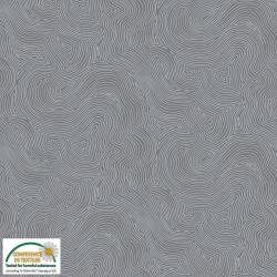 Echo lines grey