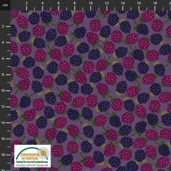 Tossed Blackberries - PURPLE