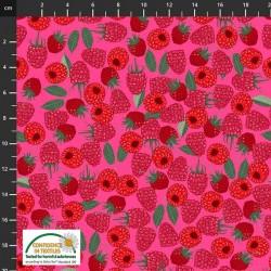Tossed Raspberries - DK PINK