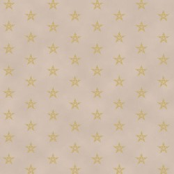 STARS - TAUPE/GOLD