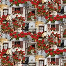 Cats and Geraniums - PORCH