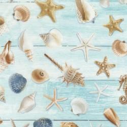 All Over Seashells - AQUA