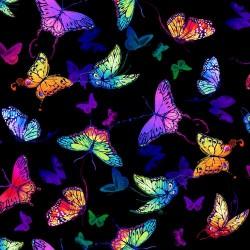 Whirlwind Butterflies - BLACK