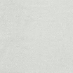 CLAMSHELLS - WHITE