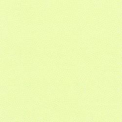 SPIN BLENDER - CELERY