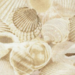 Packed Seashells - NATURAL