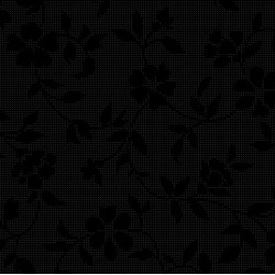 VINES - BLACK
