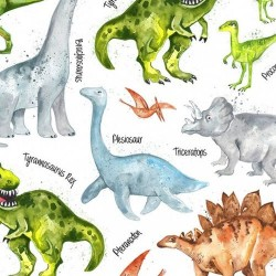 Dinos and Names - WHITE
