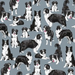 Collies - BLUE
