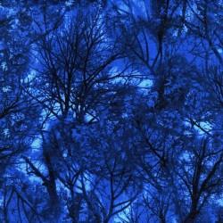Trees - BLUE