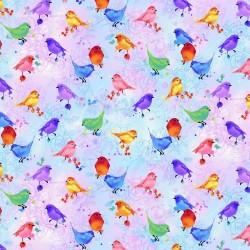 Birds - MULTI