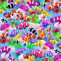Clown Fish - MULTI