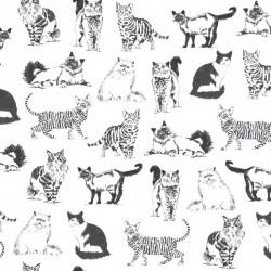 Cats - NATURAL