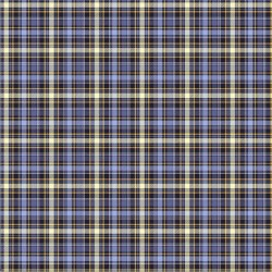 Blue Star Plaid - BLUE