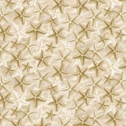 Starfish on Sand - NATURAL