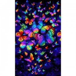 Panel - Bright Butterfly Magic 60cm - MULTI