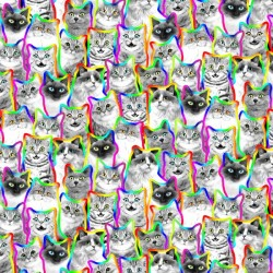 Neon Outline Black And White Cats - MULTI