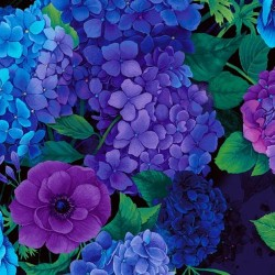 FEATURE HYDRANGEAS DIGITAL - PLUM