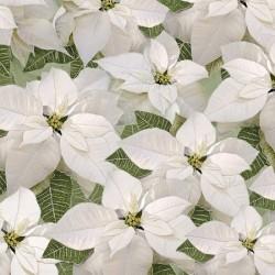 POINSETTIAS - WHITE/GOLD